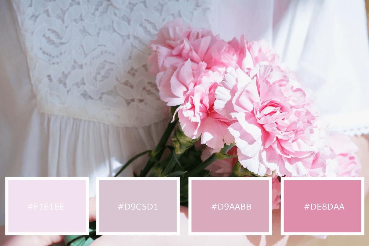 custom feminine divi website templates
