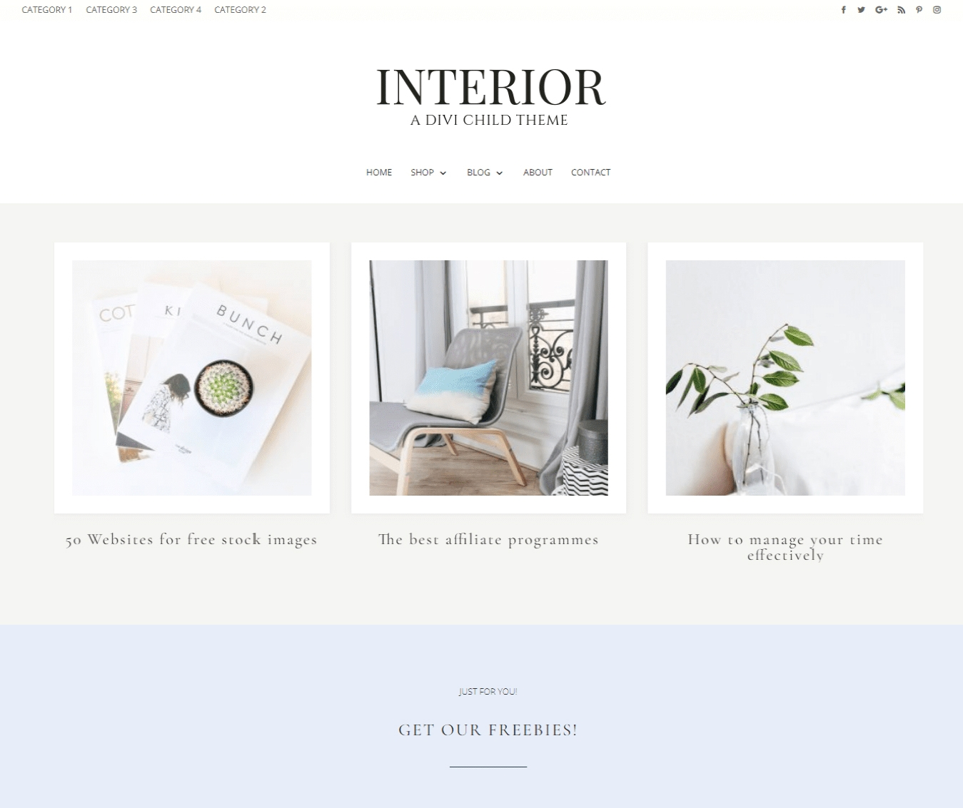 Interior is perfect for social media experts, bloggers and those that want to make a statement with their blog.